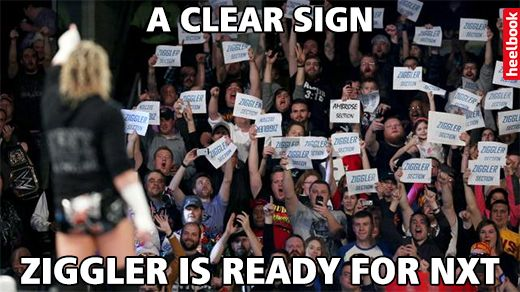 2---Ziggler---Signs-compressor